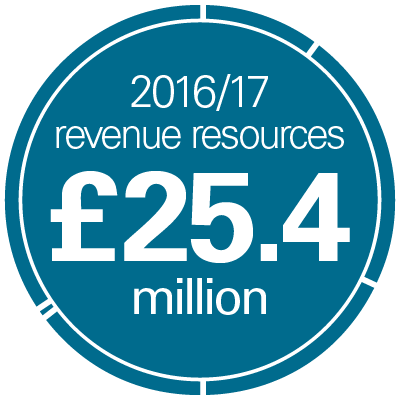 Revenue resources