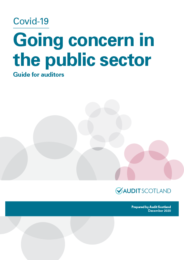 Report cover: Covid-19: Going concern in the public sector