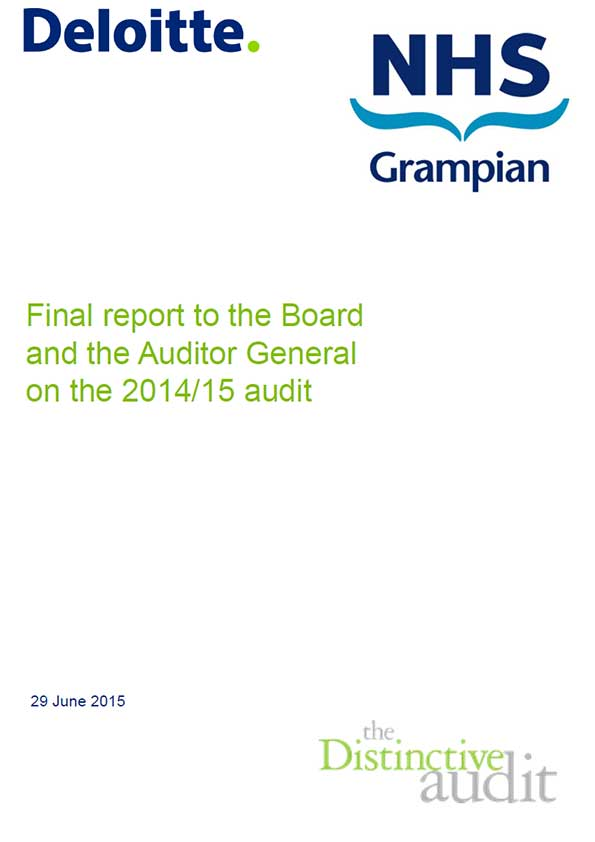how to find auditor in annual report