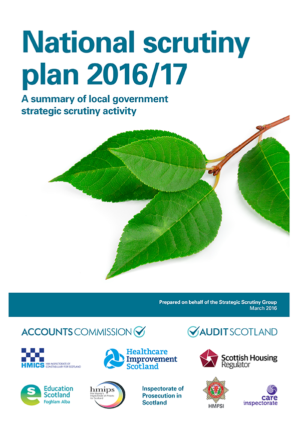 View National Scrutiny Plan for Local Government 2016/17