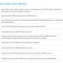 What public audit delivers
