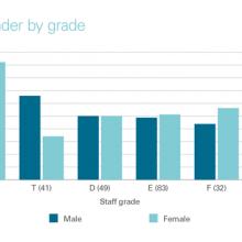 Staff profile by gender