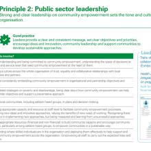 Principle 2: Public sector leadership