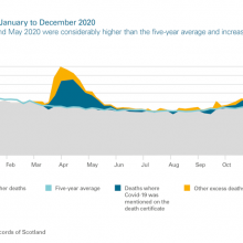 Excess deaths January to December 2020